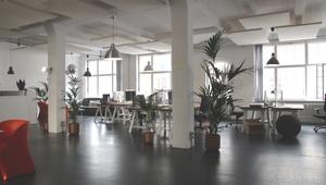 Teambüro  - modern digital und flexibel - 8 desks